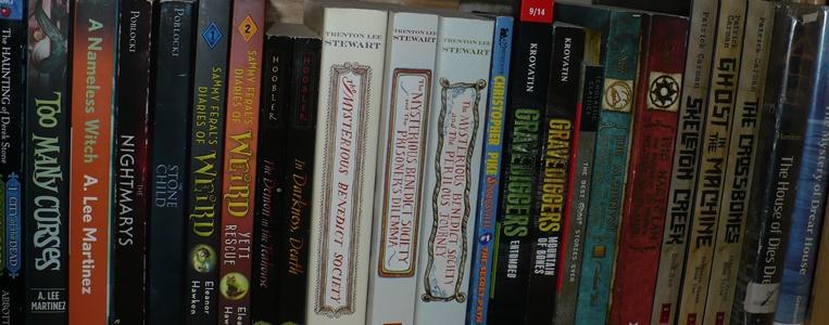 YA Bookshelf