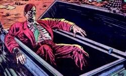Mahogany Coffin