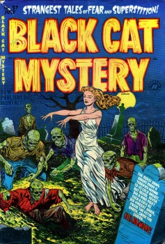 BlackCatMystery